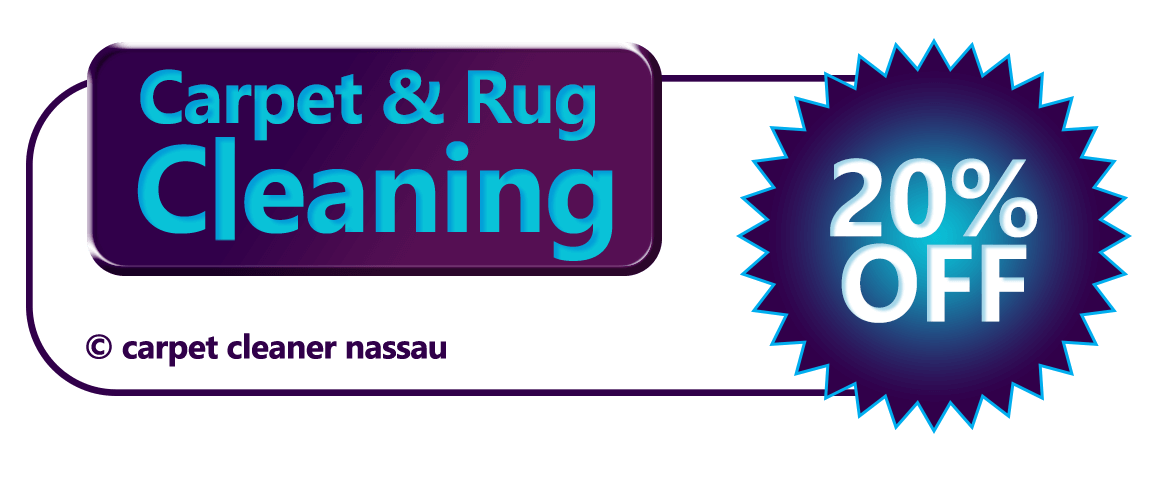 Get 20 percent off with any are rug cleaning